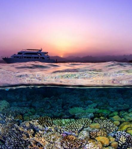 s-la-mer-rouge-cette-magnifique-vue-d-un-coucher-de-soleil-au-dessus-d-un-recif-corallien-remporte-la-3e-place-de-la-categorie-paysages-coralliens_65472_w460.jpg
