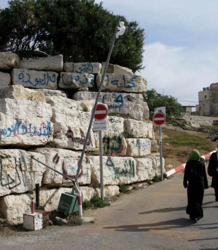storker_palestine.jpg