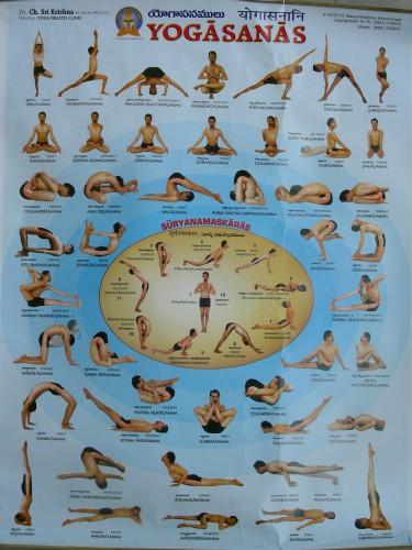 yoga,asanas,patanjali,postures,hatha yoga,yogi,yogini