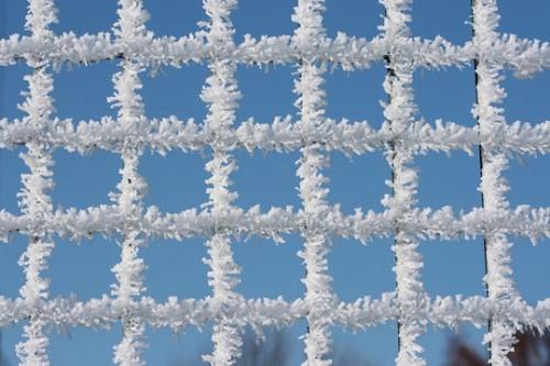 carres-neige-537987.jpg