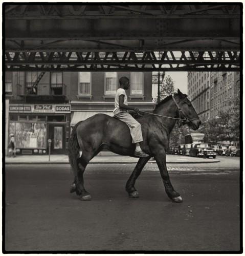 Vivian-Maier-horse.jpg