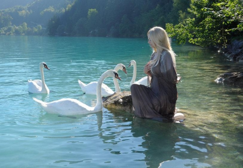 swan_lake_6_by_kuoma_stock-d5f1c8i.jpg